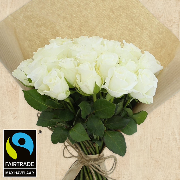 40-roses-blanches-200-4127.jpg