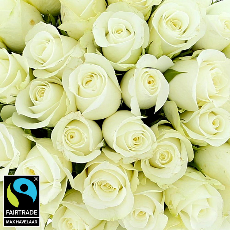 40-roses-blanches-750-5309.jpg