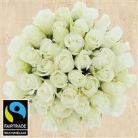 40-roses-blanches-et-son-vase-200-4131.jpg