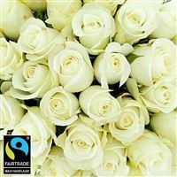 40-roses-blanches-et-son-vase-200-5315.jpg