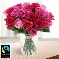 40-roses-en-camaieu-rose-200-6545.jpg