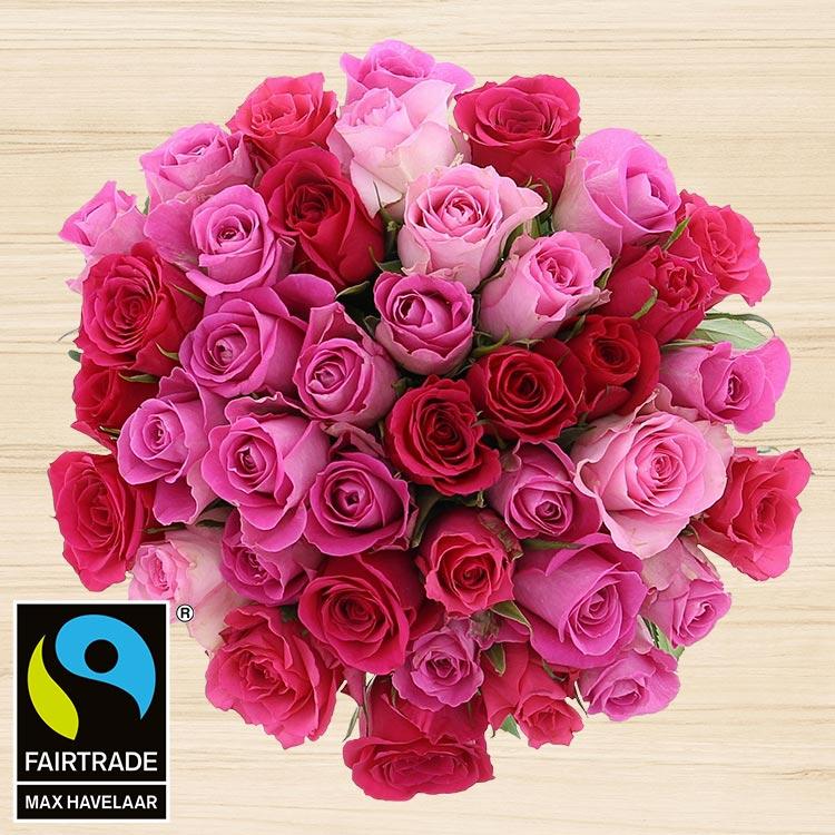 40-roses-en-camaieu-rose-200-4101.jpg