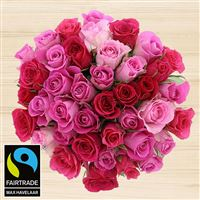 40-roses-en-camaieu-rose-et-son-vase-200-4097.jpg