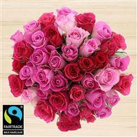 40-roses-en-camaieu-rose-et-son-vase-200-5345.jpg