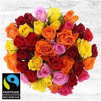 40-roses-multicolores-200-4094.jpg