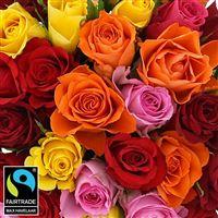 40-roses-multicolores-200-5324.jpg