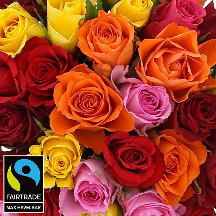 40-roses-multicolores-200-3001.jpg