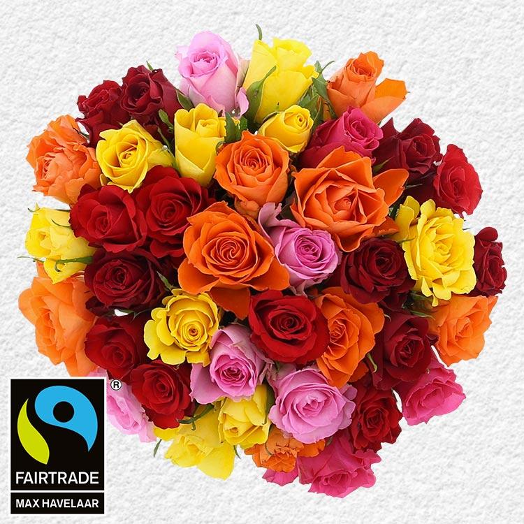 40-roses-multicolores-200-3002.jpg