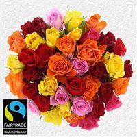 40-roses-multicolores-et-son-vase-200-3004.jpg