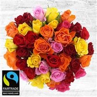 40-roses-multicolores-et-son-vase-200-4091.jpg