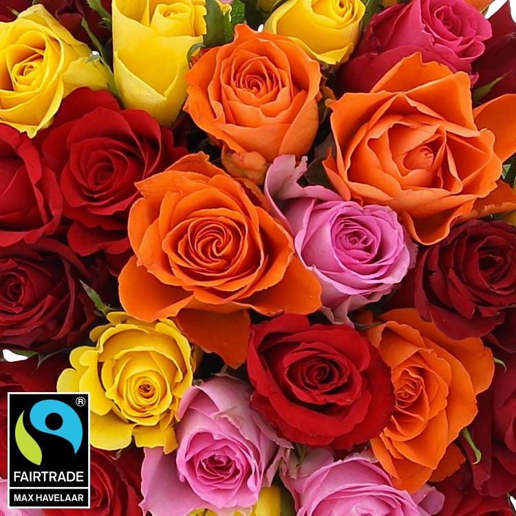 40-roses-multicolores-et-son-vase-750-5330.jpg
