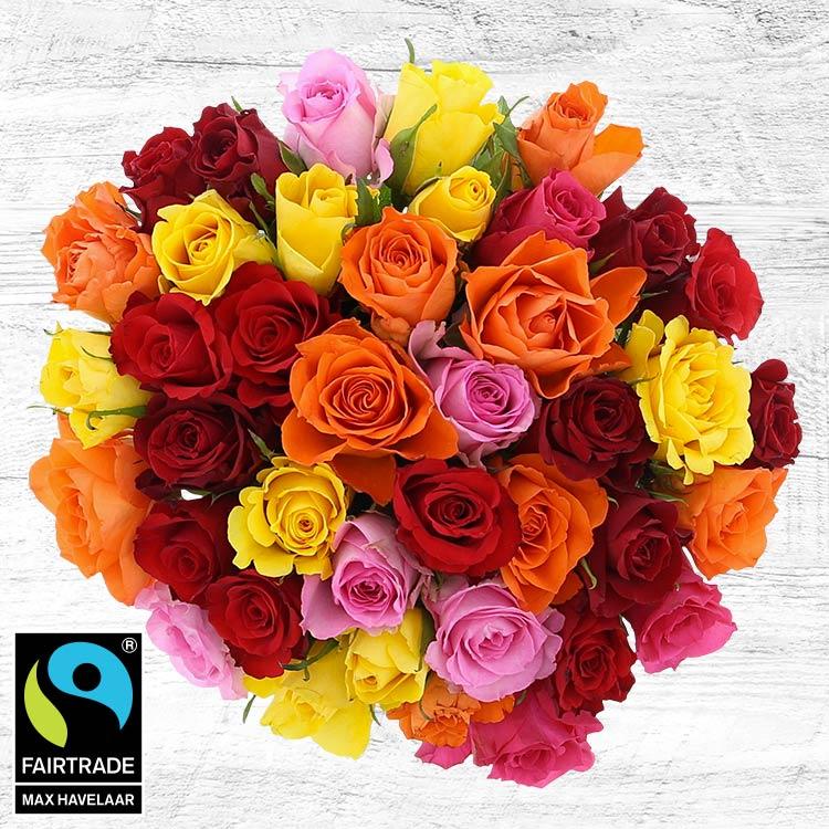 40-roses-multicolores-et-son-vase-750-5331.jpg