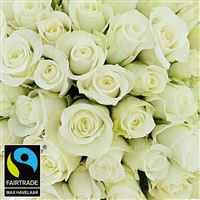 50-roses-blanches-vase-200-2962.jpg