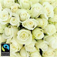 50-roses-blanches-vase-200-5317.jpg