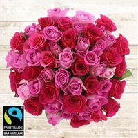 50-roses-en-camaieu-rose-200-5341.jpg