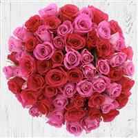 50-roses-en-camaieu-rose-200-6767.jpg
