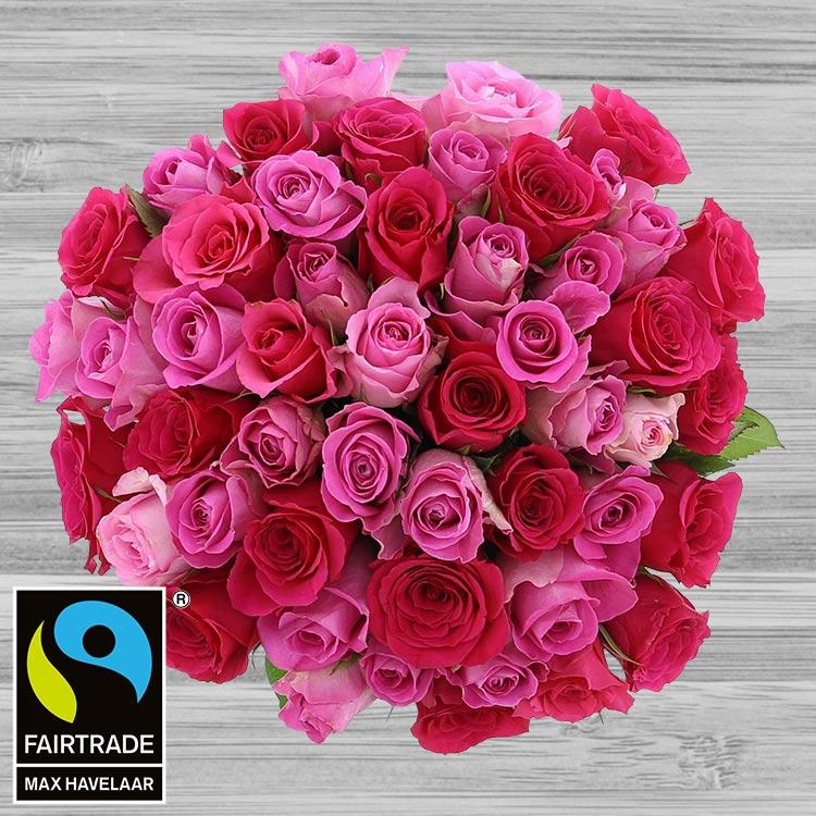 50-roses-en-camaieu-rose-200-2975.jpg