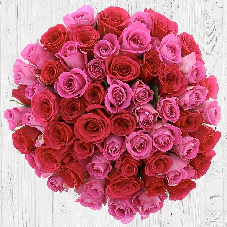 50-roses-en-camaieu-rose-750-6767.jpg