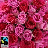 50-roses-en-camaieu-rose-vase-200-5348.jpg