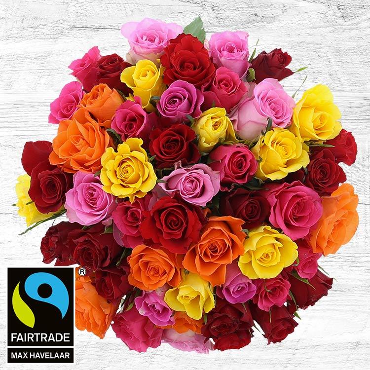 50-roses-multicolores-200-4093.jpg