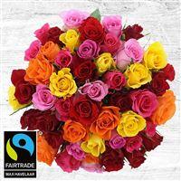 50-roses-multicolores-vase-200-4090.jpg
