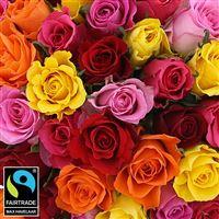 50-roses-multicolores-vase-200-5335.jpg