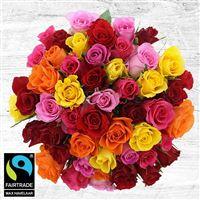 50-roses-multicolores-vase-200-5336.jpg