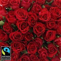 50-roses-rouges-200-5294.jpg