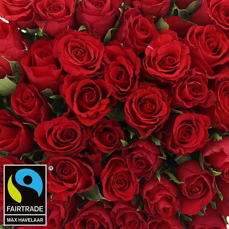 50-roses-rouges-champagne-750-2990.jpg