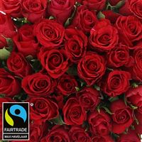 50-roses-rouges-chocolats-200-2991.jpg