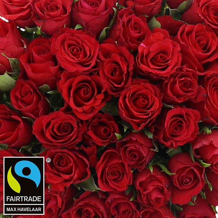 50-roses-rouges-chocolats-750-2991.jpg