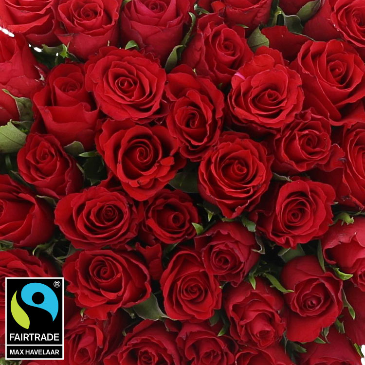 50-roses-rouges-vase-200-5302.jpg