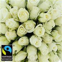 60-roses-blanches-vase-200-2968.jpg
