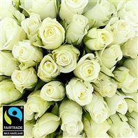 60-roses-blanches-vase-200-5319.jpg