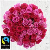 60-roses-en-camaieu-rose-200-2979.jpg