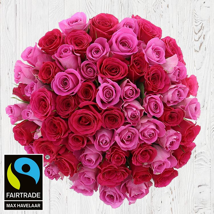 60-roses-en-camaieu-rose-vase-200-4095.jpg