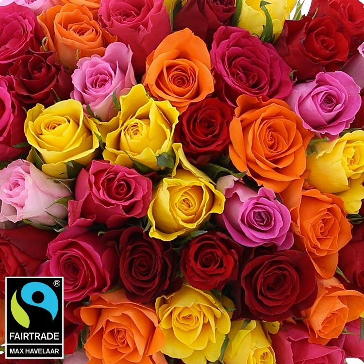 60-roses-multicolores-750-5328.jpg