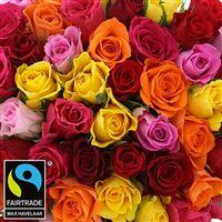 60-roses-multicolores-vase-200-3011.jpg
