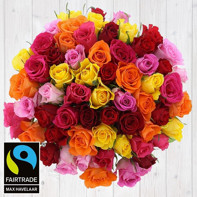 60-roses-multicolores-vase-200-4088.jpg