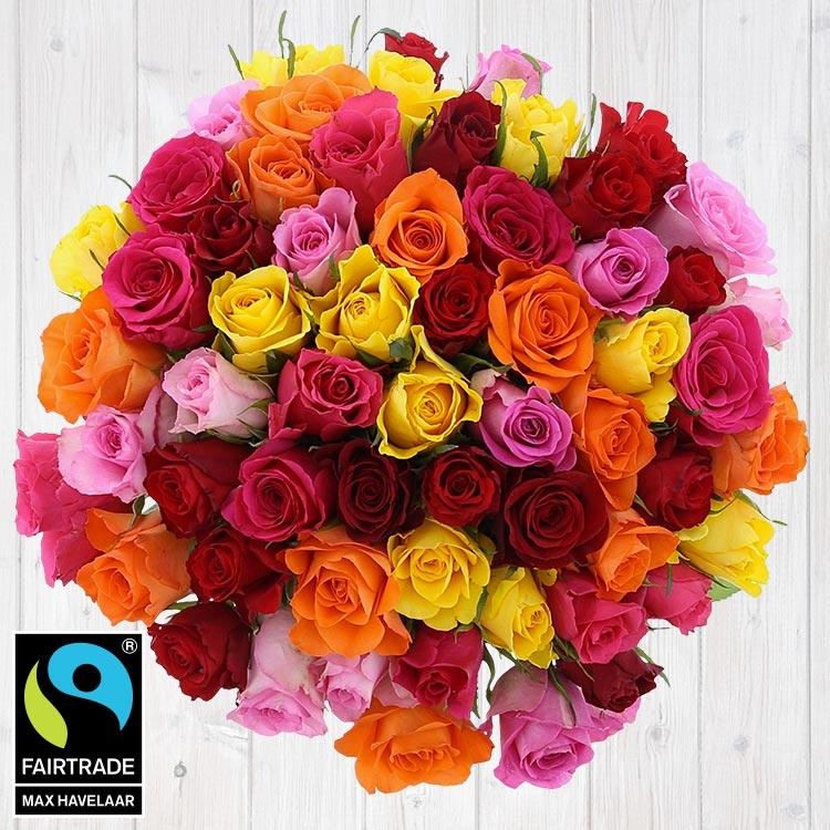 60-roses-multicolores-vase-200-5338.jpg