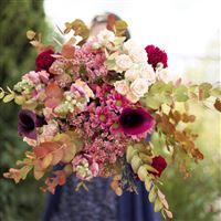 automne-romanesque-200-5495.jpg