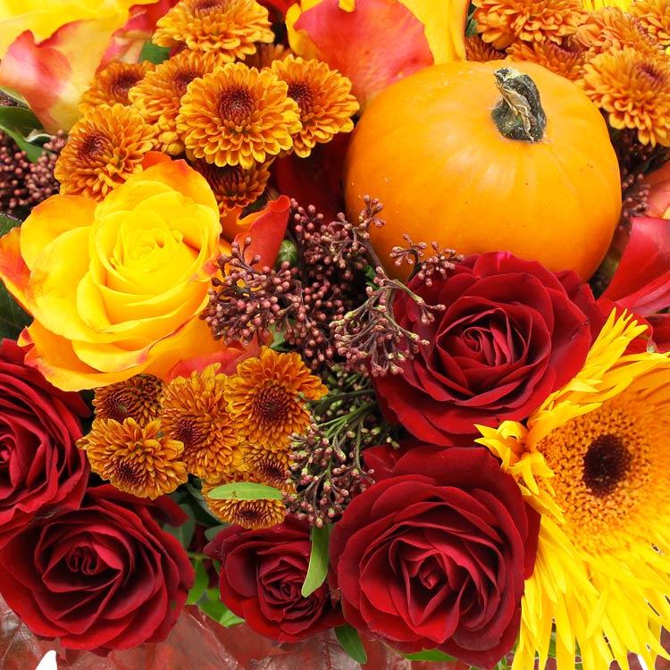 automne-xxl-750-2055.jpg