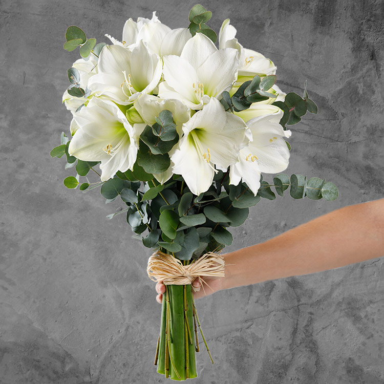 bouquet-d'amaryllis-blanc-et-son-vas-750-3442.jpg