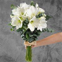 bouquet-d'amaryllis-blanc-xl-200-3434.jpg