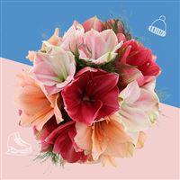 bouquet-d'amaryllis-variees-et-son-v-200-3417.jpg