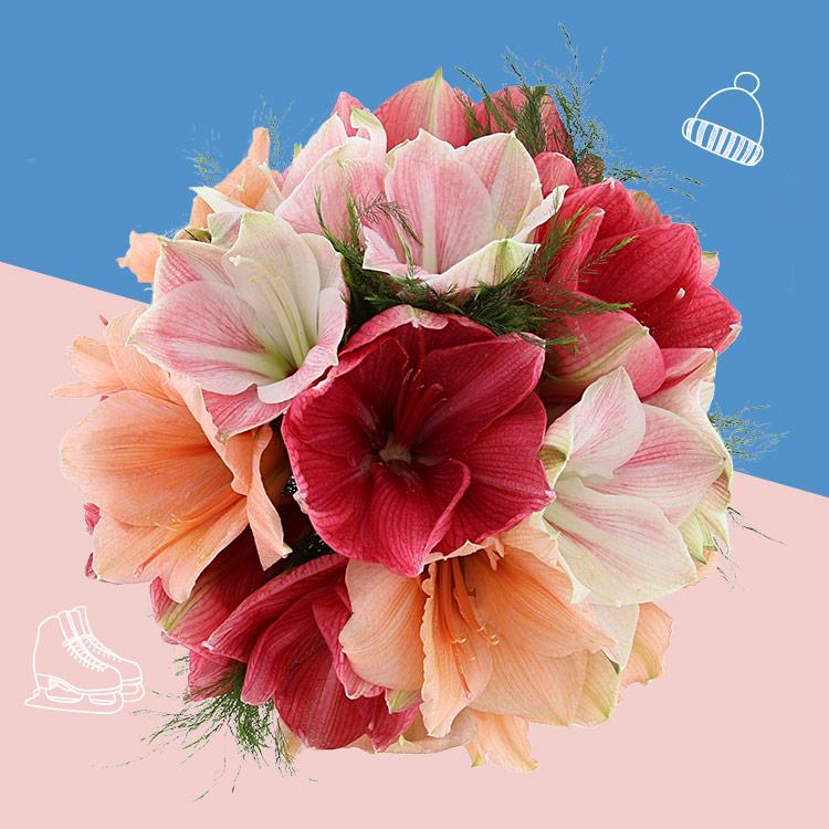 bouquet-d'amaryllis-variees-et-son-v-750-3417.jpg