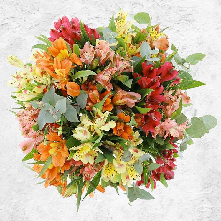 bouquet-d-alstroemerias-orange-et-so-200-3144.jpg