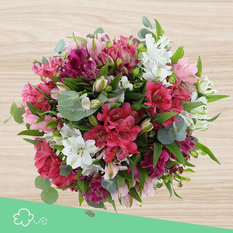 bouquet-d-alstroemerias-roses-xl-750-4189.jpg