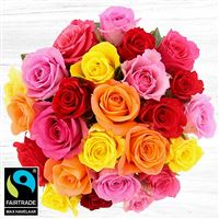 bouquet-de-25-roses-variees-200-5322.jpg