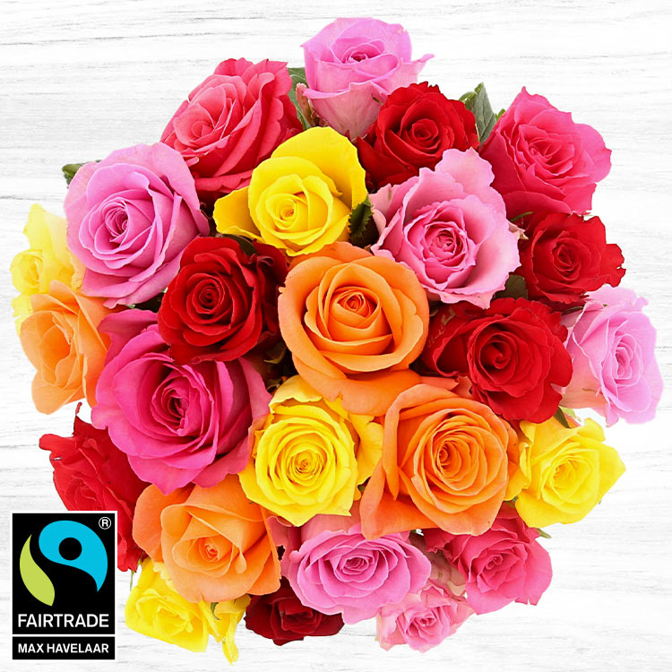 bouquet-de-25-roses-variees-750-5322.jpg